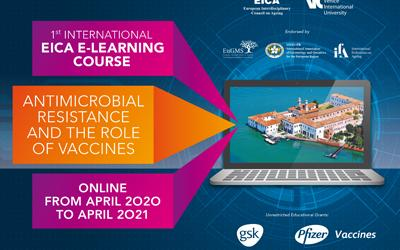 First International e-learning Course